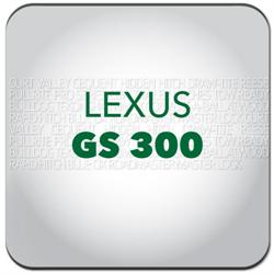 GS 300
